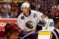 Dustin Brown - Monarchs