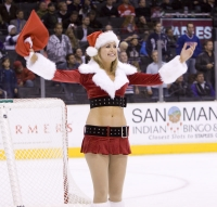 Kings Crew Elf -  Shannon