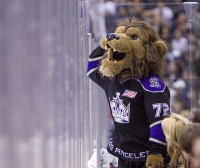 Bailey, The Kings Mascot