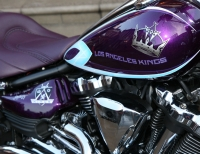 Kings Ice Bike