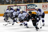 sharks_kings3