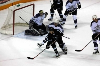 sharks_kings4