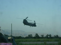 chinook1 by