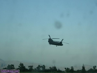 chinook2 by