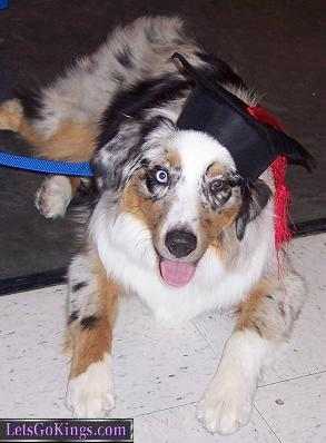 Barnum at his graduation